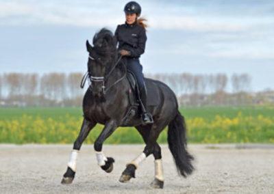 Ondernemer: Astrid Hoppenbrouwers, eigenaar Horses in hands